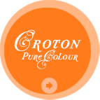 Croton - Pure Colour